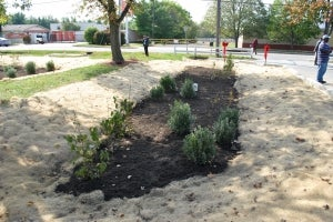 A rain garden that will clean thousands of gallons of polluted runoff.  Photo credit: Interfaith Partners of the Chesapeake.
